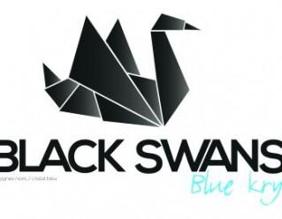 Programme immobilier neuf Strasbourg - 3 Black Swans